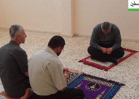 صور من فلسطين 644947705