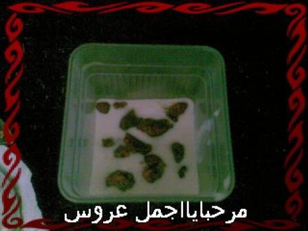 http://www12.0zz0.com/2010/07/03/23/130401831.jpg