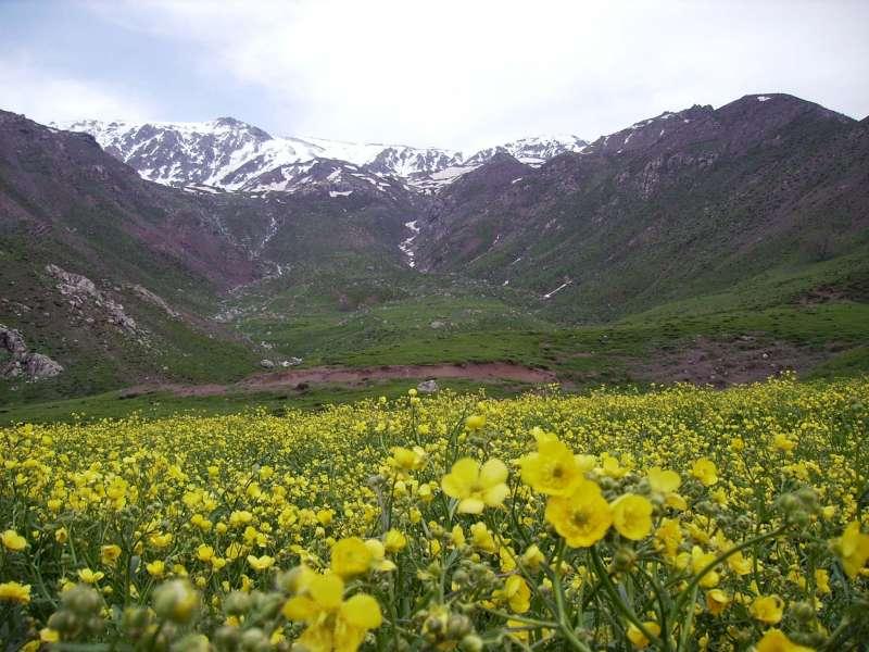 بلوشستان 590594040.jpg