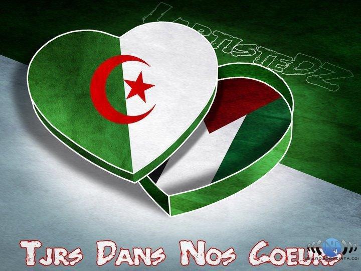غزّة +الجزائر=كل شيء 865082338