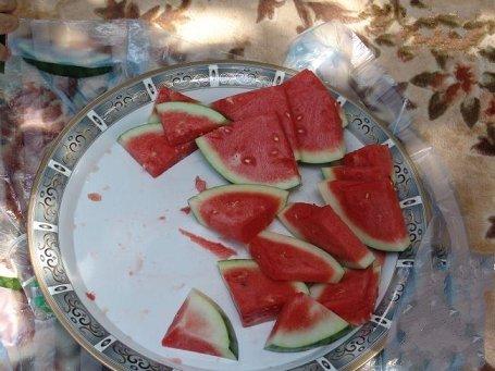 الفرق ياكلون البطيخ