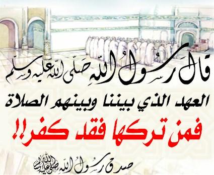 عامر بن سعيد 438340545