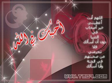,,,,,الأخوه,,,,