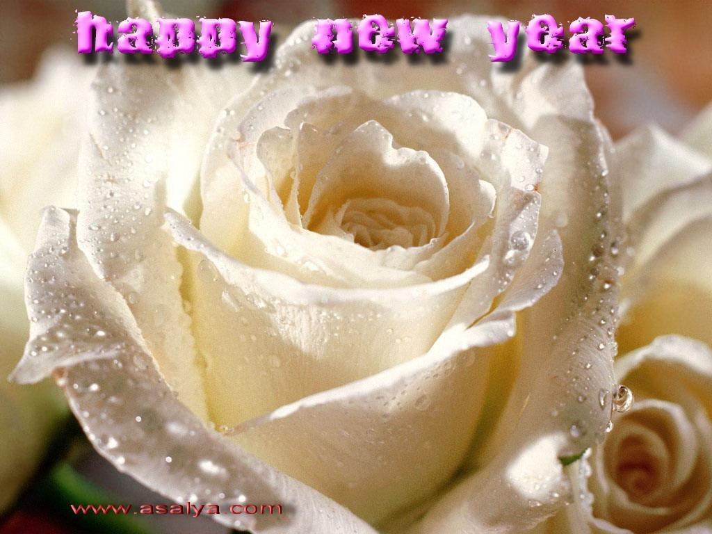 404729390 اجمل واحلى كروت جديده جدا للتهنئه بالعام الجديد 2013