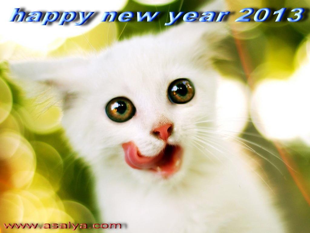 526876811 اجمل واحلى كروت جديده جدا للتهنئه بالعام الجديد 2013