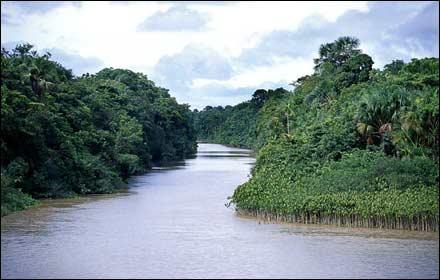 نهر الأمازون