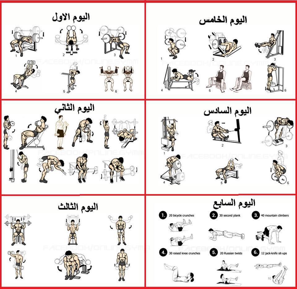 جدول تدريب الحديد للاعبي كرة القدم