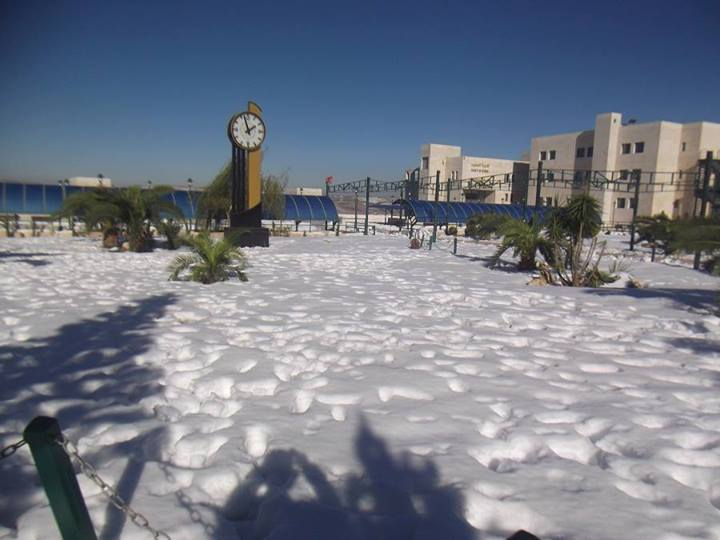 """نآبلس والثلوج 2013 """" 343925341.jpg"""