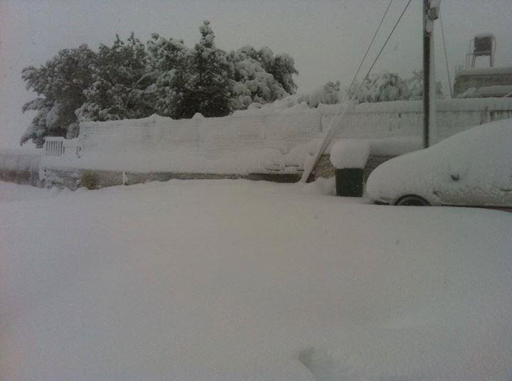 """نآبلس والثلوج 2013 """" 634098808.jpg"""