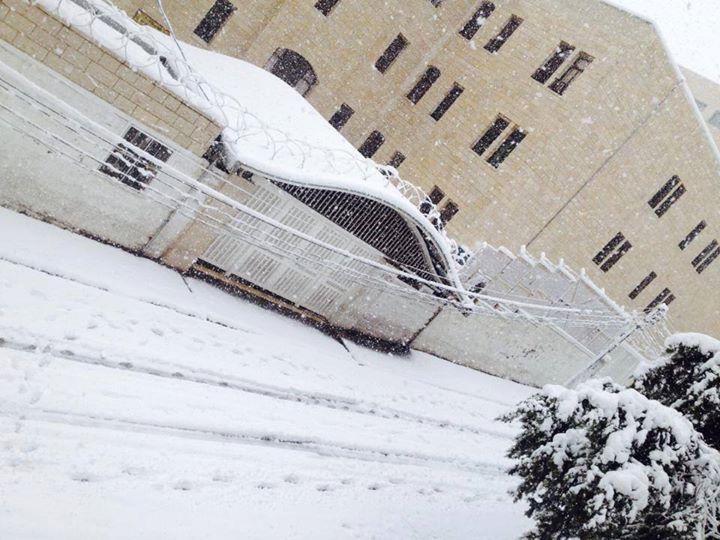 """نآبلس والثلوج 2013 """" 659454861.jpg"""