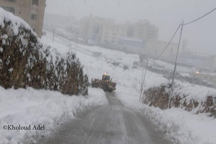 """نآبلس والثلوج 2013 """" 900578959.jpg"""