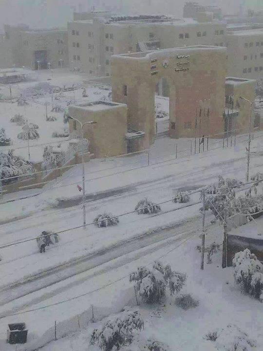 """نآبلس والثلوج 2013 """" 969903506.jpg"""
