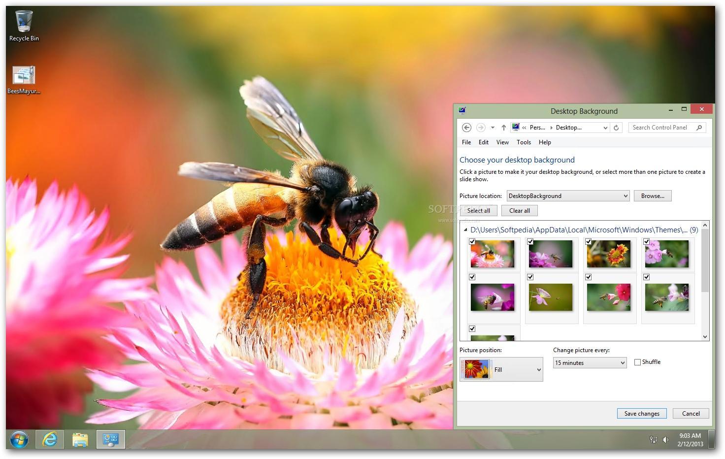 Bees Theme,بوابة 2013 320654946.jpg