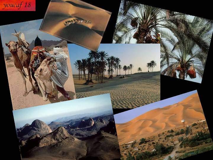 تعرف على صحراء الجزائر عمل خاص 60 صورة من ابداعي 689022763.jpg