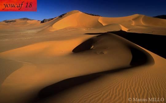 تعرف على صحراء الجزائر عمل خاص 60 صورة من ابداعي 891204551.jpg