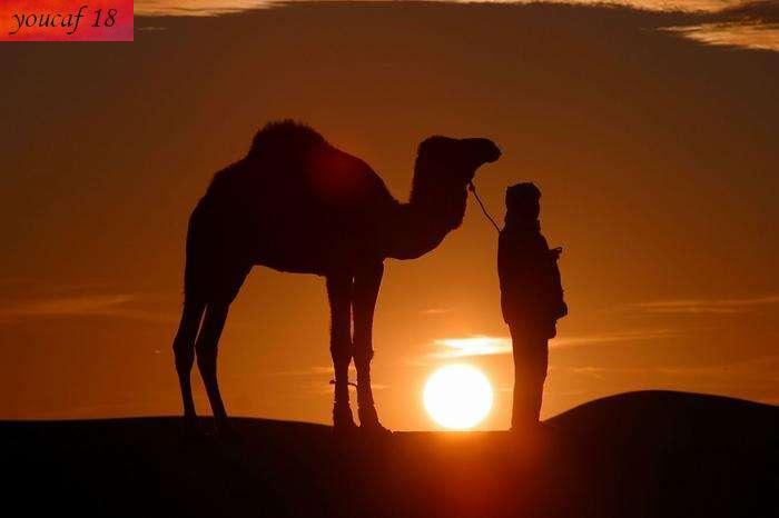 تعرف على صحراء الجزائر عمل خاص 60 صورة من ابداعي 993127529.jpg