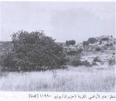 القرى الفلسطينه_كدنة