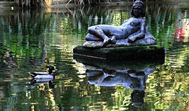 من اجمل حدائق العالم .. 180254416.jpg