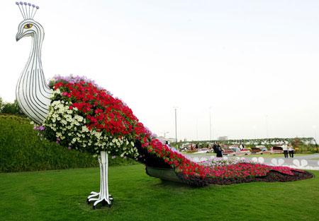 """""""دبي 255676282.jpg"""